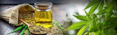Health Benefits Of CBD In Humans And Animals