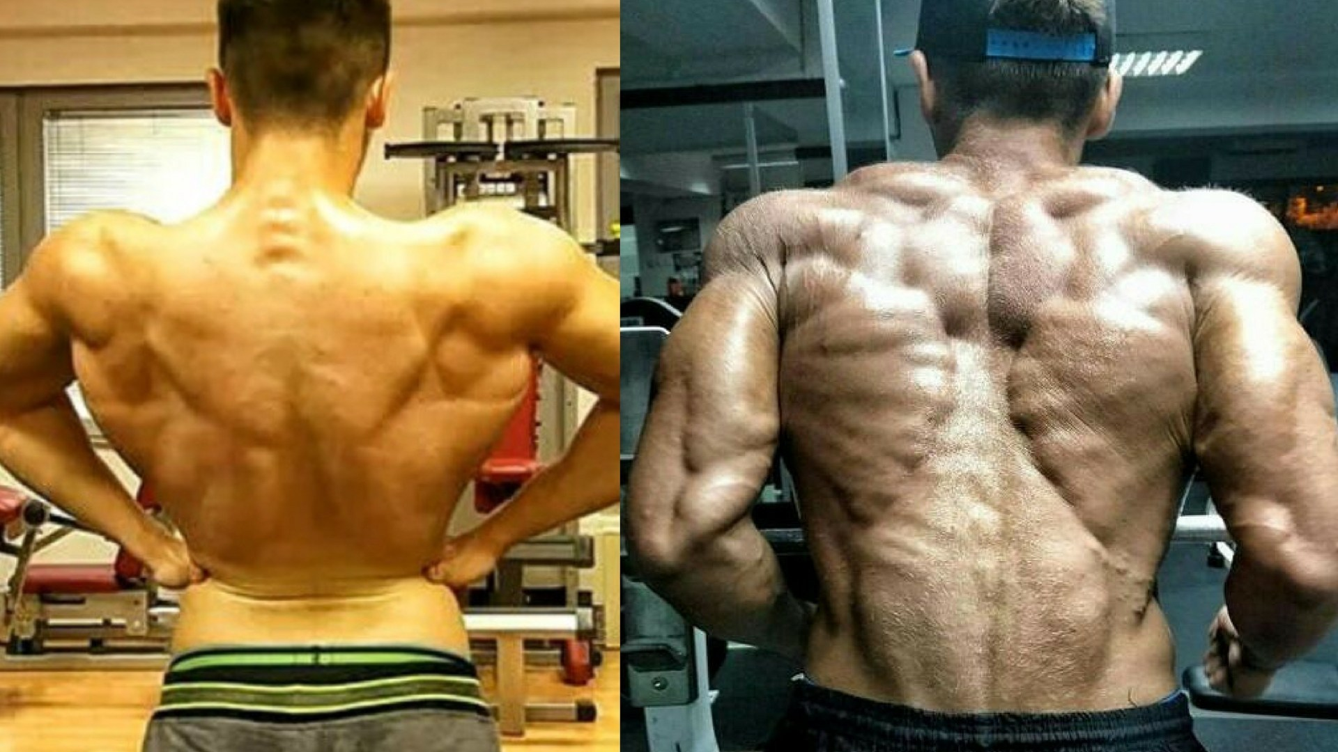 Find out how easy it is to buy sarms (comprarsarms) from the most trusted providers on the internet